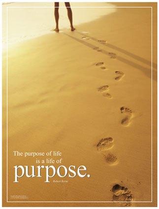 purpose-poster-2